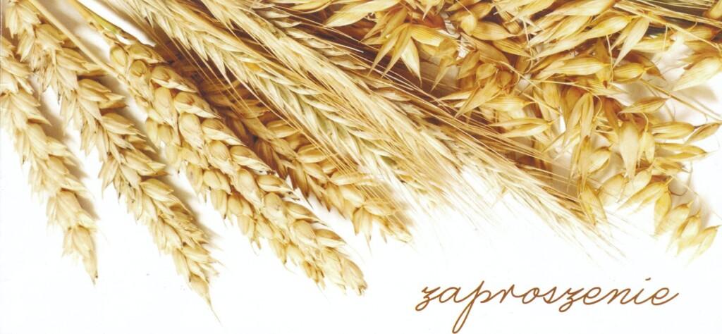 """Grafika - kłosy zbóż, napis """"Zaproszenie"""""""
