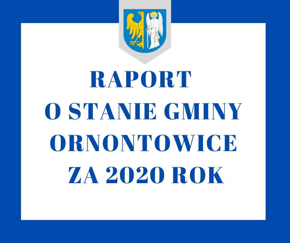 Grafika - raport o stanie Gminy za 2020 r.